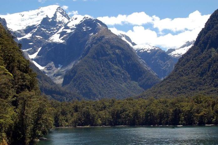 Bolsas para Doutorado na Nova Zelândia de R$60 Mil