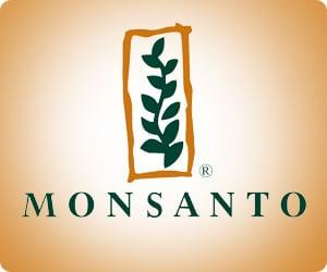 Oportunidade de Estágio Monsanto Inscrições Abertas