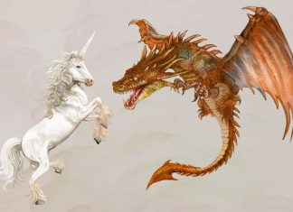 A Startup Ideal não é Unicórnio, mas sim Coelho, Dragão e Barata