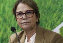 Cooperativas receberão incentivo do Ministério da Agricultura