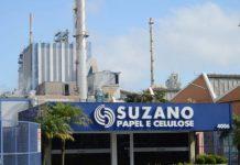 Lucro da Suzano vem dentro do esperado em R$ 1,4 bilhões