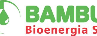 Bambuí é vendida pela Petrobras por R$ 1,00